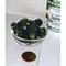 Swanson® Спирулина 500 мг., 180 капсул