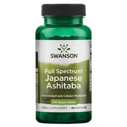 Ашитаба Японская / Japanese Ashitaba, 500 мг 60 капсул - фото 7059